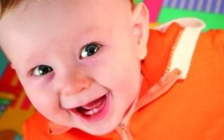 Сколько зубов в 11 месяцев