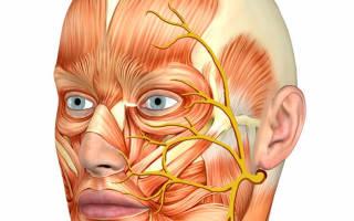 Тройничный нерв как болит