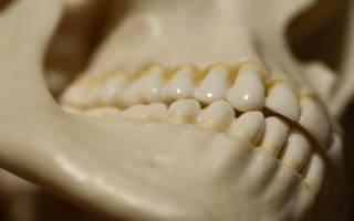 Почему щелкает челюсть когда открываешь рот